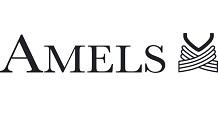 181205-AMELSlogo_CMYK_website